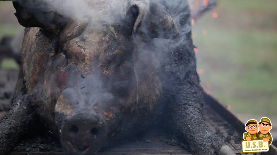 macpixel butchering a pig5