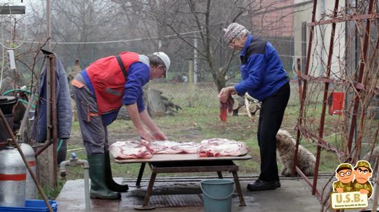 macpixel butchering a pig9